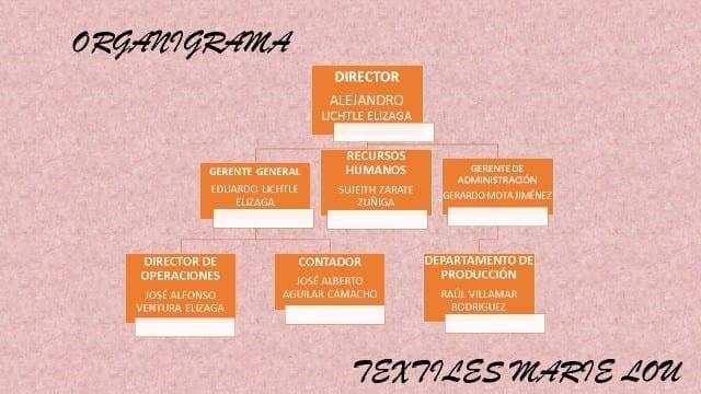 Estructura Organizacional de una Empresa de Textiles