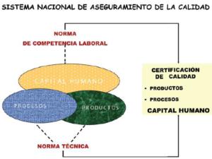 Sistema nacional de aseguramiento de la calidad