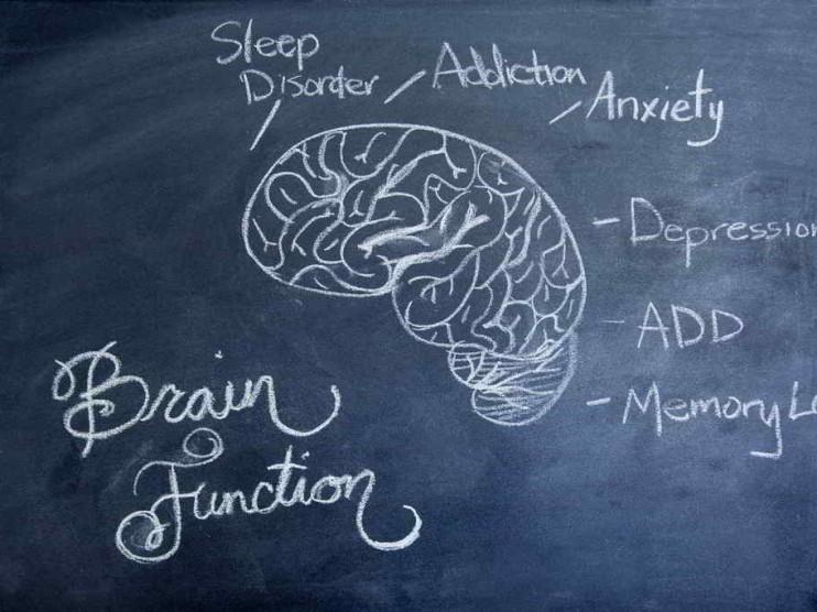 Noradrenalina. Aversión a las Pérdidas y Neurofinanzas