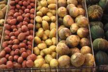 Propuesta para mejorar la gestión de compras en una empresa de alimentos