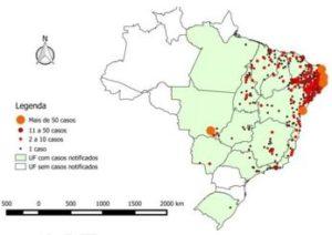 Distribución de los casos de microcefalia en Brasil a enero 2016