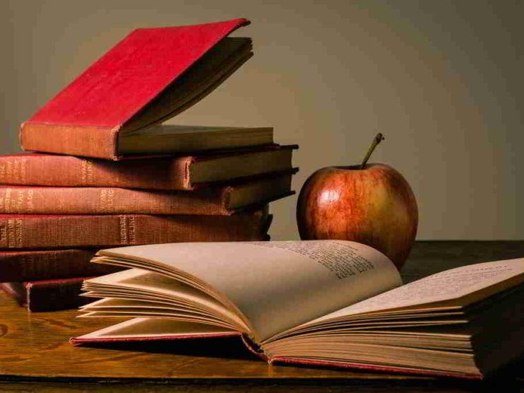 La formación a partir de la reflexión sobre las propias prácticas docentes. Fundamentos y acciones a realizar