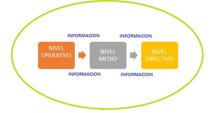 MANEJO DE INFORMACIÓN EN LA ORGANIZACIÓN