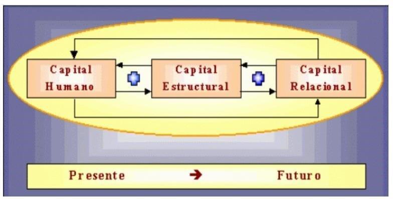 Tipos de Capital: Humano, Estructural y Relacional