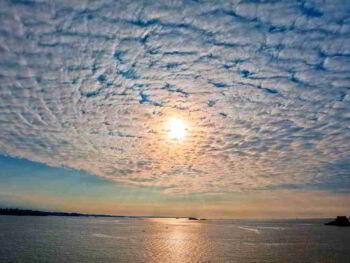 Ocean Blue. Innovación para la creación de valor