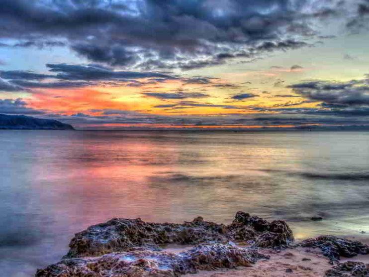 Principios para desarrollar una estrategia del Océano Azul