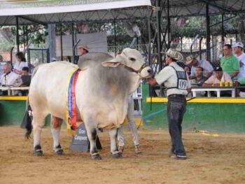 Fomento del Turismo en el Departamento de Córdoba Colombia