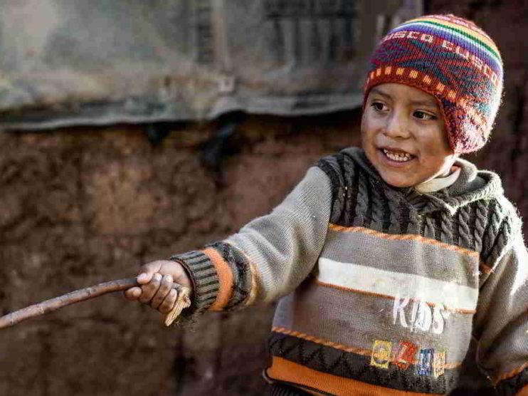 Desnutrición y demanda de calorías en el Perú. Un análisis económico