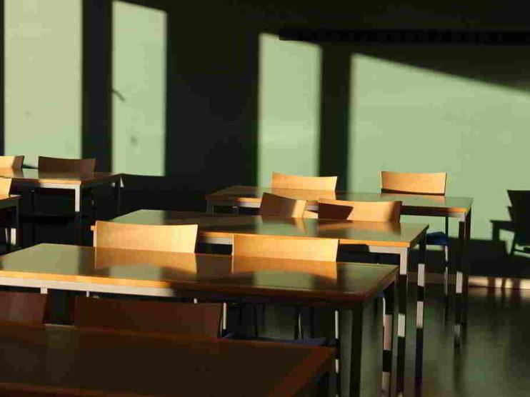 Como problematizar los contenidos programáticos de las asignaturas escolares