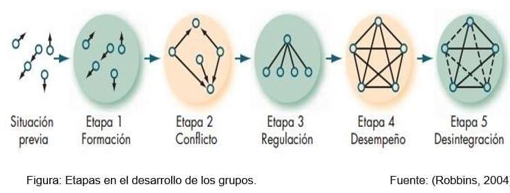 Etapas en el desarrollo de los grupos