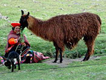 La fusión de ministerios para optimizar la gestión del Estado en el Perú
