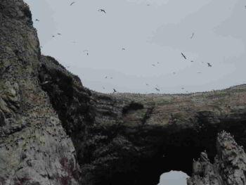 Áreas naturales protegidas en Perú ANP