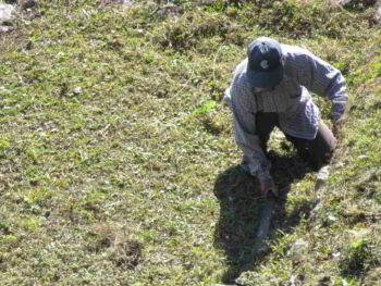 Sobrecostos laborales e informalidad en el Perú