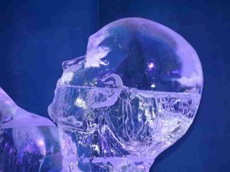 Teoría de la Programación Neurolingüística