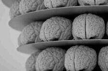 Neuromarketing. Objetivos, técnicas y su importancia