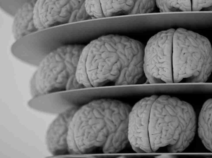 Neuromarketing. Objetivos, técnicas y su importancia