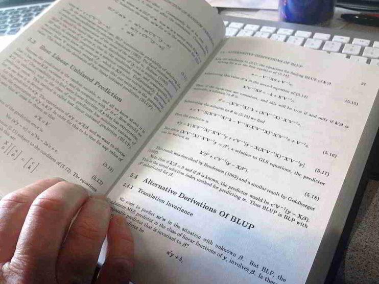 La dualidad de las matemáticas en la Ciencia Económica. Ensayo