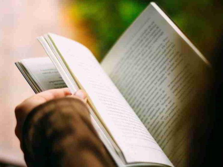 Nexos interdisciplinarios entre las asignaturas de Inglés y Español