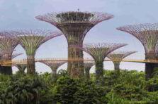 Sustentabilidad y Tecnología Verde