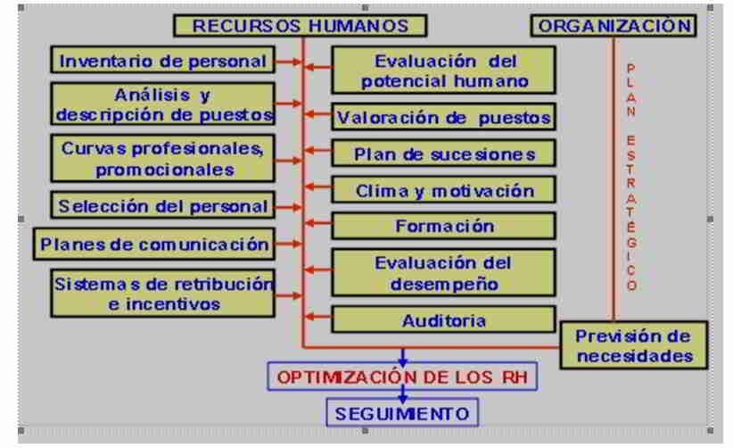 Optimización del Recurso Humano