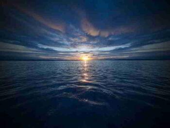 Principios para desarrollar una estrategia de Océano Azul