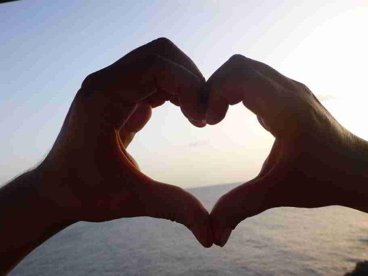 Cultivar la educación del Corazón