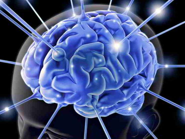 Aplicaciones de la Programación Neurolingüística