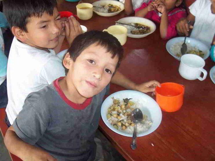 Etiquetado de los alimentos envasados en la lucha contra la obesidad infantil en el Perú