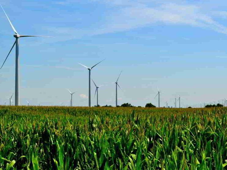 Pilares de la Tecnología Verde