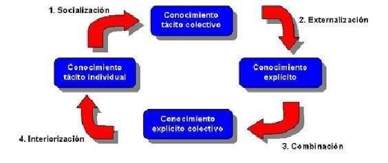 Ciclo de vida - información del Conocimiento