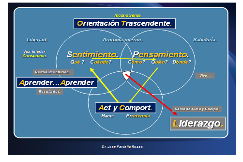 Dimensiones del Liderazgo