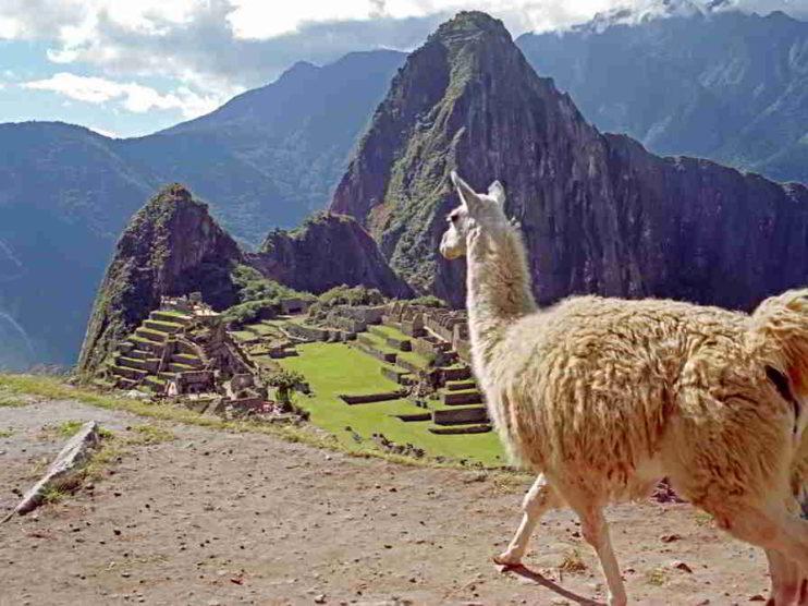 Desempeño de la Administración Pública en Perú