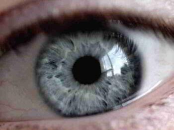 Nueva mirada en Educación: Perspectiva Sistémica