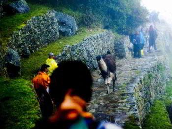 Cosmovisión e identidad cultural en Perú