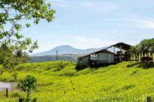 Costa Rica no ha podido enfrentar adecuadamente la Pobreza, Desigualdad y el Desempleo