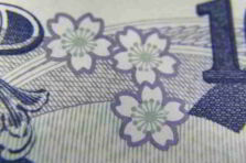 El proceso inversionista en entidades presupuestadas cubanas