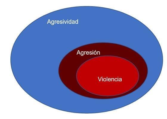 Círculo Agresividad - Agresión - Violencia