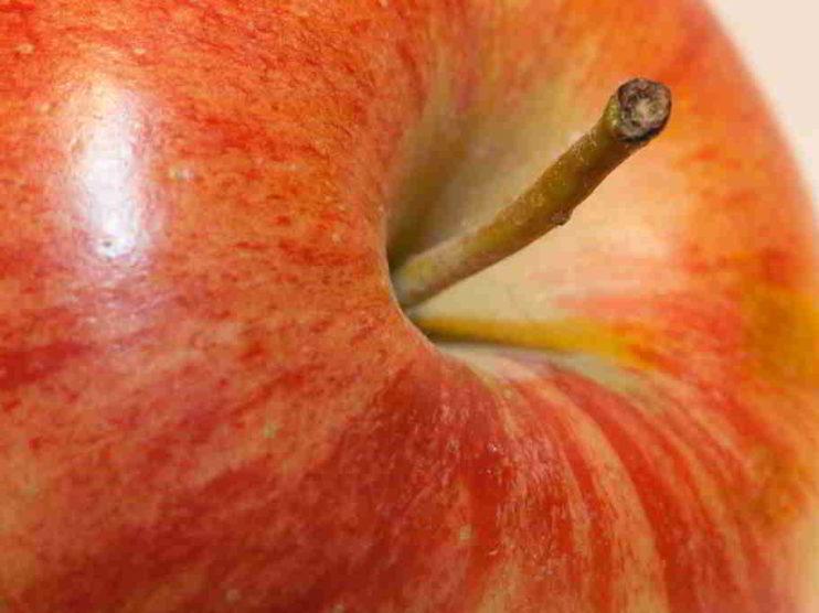 Identidad Corporativa: la fruta prohibida que nadie quiere probar