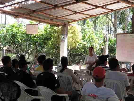 Cooperativas de Cacao en Perú
