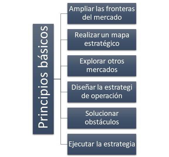 Principios básicos del océano azul.