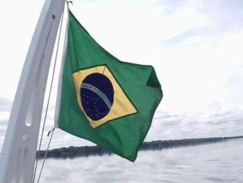 Brasil conecta con el mercado