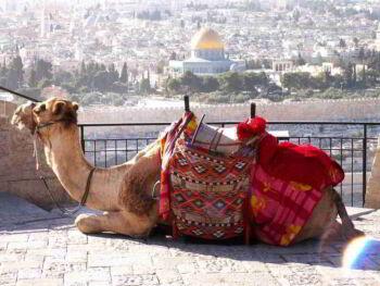 Israel: país atractivo para los negocios