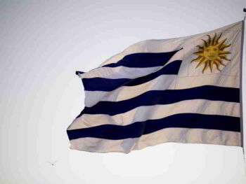 Teoría de los Recursos Administrativos en Uruguay