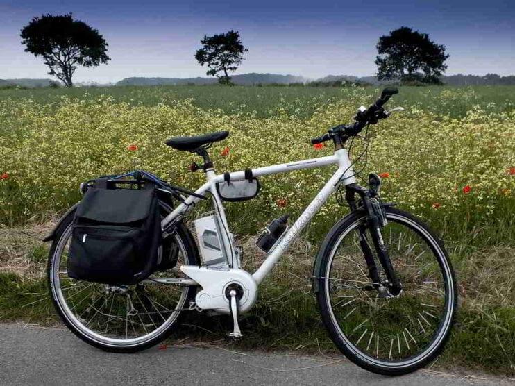La Movilidad Verde: Una gran oportunidad de negocio para México