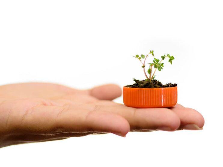 Conceptos de economía verde, contabilidad verde y finanzas verdes