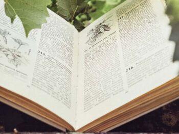 Importancia de la lectura en el proceso de enseñanza – aprendizaje del inglés como lengua extranjera