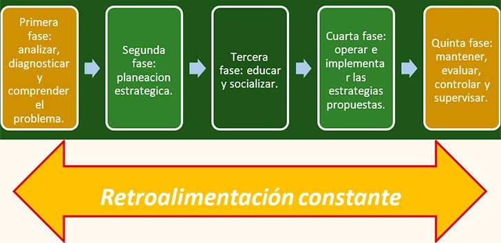 Fases del Desarrollo Organizacional