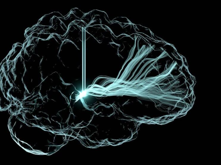Resiliencia y Neurociencias para enfrentar adversidades actuales