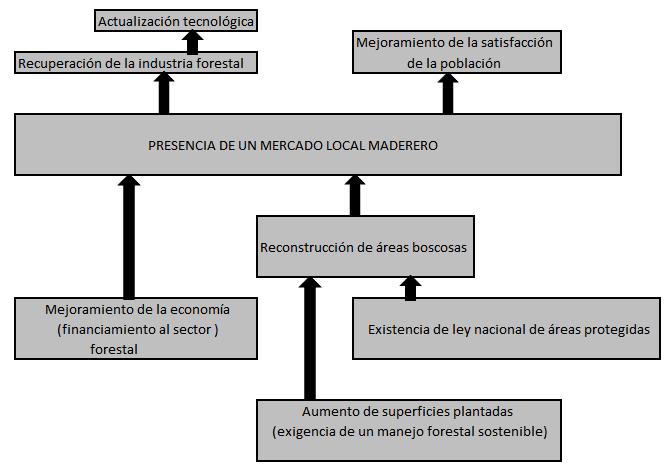 Árbol de objetivos para un Proyecto Maderero en Cuba