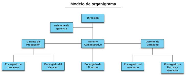 Modelo de organigrama - Elementos del diagnóstico interno de la empresa para un plan estratégico